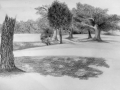 CSU landscape Sketch